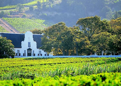 winelands4