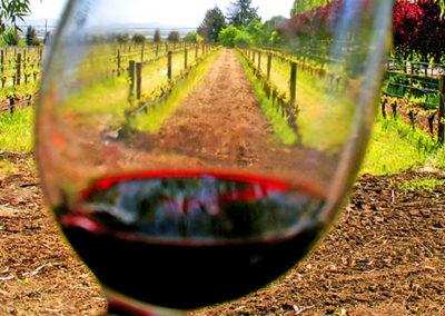 winelands10